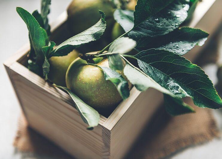 Jabłko – codzienne wzmocnienie odporności